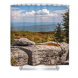 View From Bear Rocks 4173c Shower Curtain