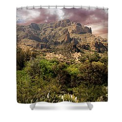 View From Boyce Thompson Shower Curtain by Anne Rodkin