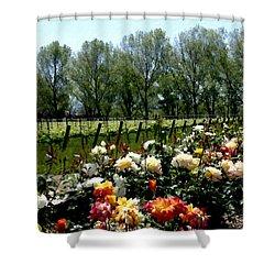 View From Bridlewood Vineyards Shower Curtain by Kurt Van Wagner