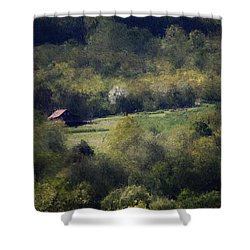 View From The Pond At The Hacienda Shower Curtain by David Lane