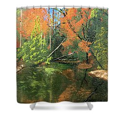 View Of Creek From Lake Huron Shower Curtain