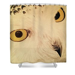 View Of Nature Shower Curtain