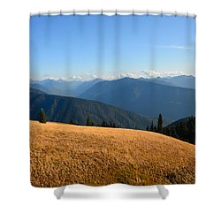 View Of Olympics From Hurricane Ridge Shower Curtain