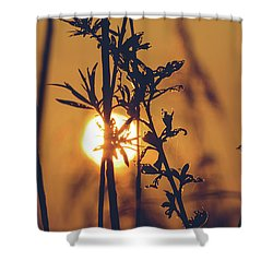 View Of Sun Setting Behind Long Grass D Shower Curtain