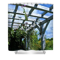 View To The Sky Shower Curtain by Lois Lepisto