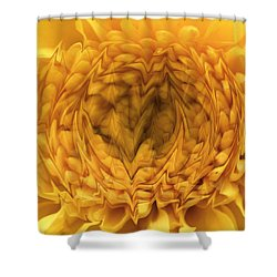 Shower Curtain featuring the photograph View Within by Shari Jardina