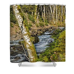 Views Of A Stream, I Shower Curtain