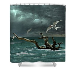 Vigil At Sea Shower Curtain