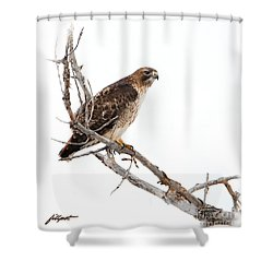 Vigilant Shower Curtain