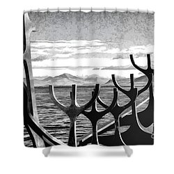 Viking Tribute Shower Curtain