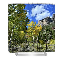 Village Beneath Mt. Charleston Shower Curtain