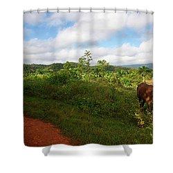 Vinales Valley II Shower Curtain