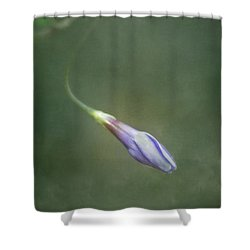 Vinca Shower Curtain