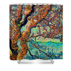 Vincent At Duxbury Bay Shower Curtain