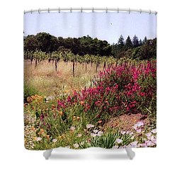 vines and flower SF peninsula Shower Curtain by Ted Pollard