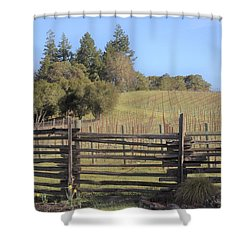 Vineyard In The Spring Shower Curtain