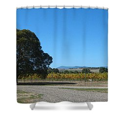 Vineyard Trees Shower Curtain