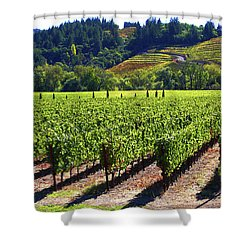 Vineyards In Sonoma County Shower Curtain by Charlene Mitchell