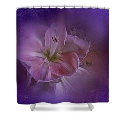 Vintage Amaryllis No. 3 Shower Curtain by Richard Cummings