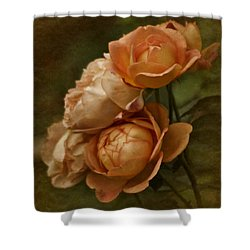 Vintage Aug Roses Shower Curtain