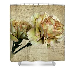 Vintage Carnations Shower Curtain by Judy Vincent