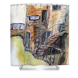 Vintage Carpet Clean Shower Curtain by Clyde J Kell