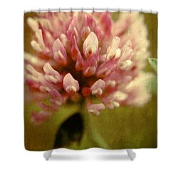Vintage Clover Shower Curtain by Aimelle