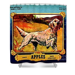 Vintage English Setter Apples Advertisement Shower Curtain by Peter Gumaer Ogden