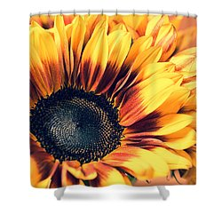 Shower Curtain featuring the photograph Vintage Fall by Julie Andel