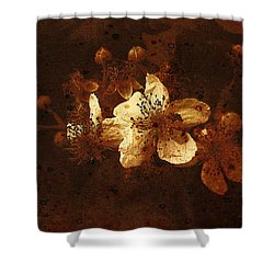 Shower Curtain featuring the digital art Vintage Cherry Blossoms by Fine Art By Andrew David