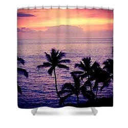 Vintage Hawaii Shower Curtain by Russell Keating