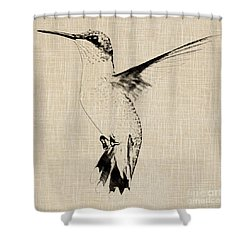 Vintage Hummingbird Shower Curtain