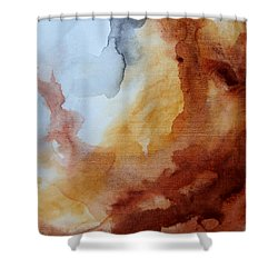Vintage Impression Shower Curtain