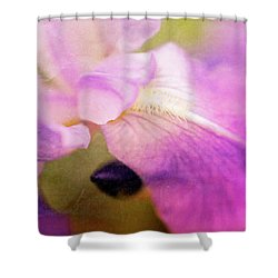 Vintage Iris Shower Curtain