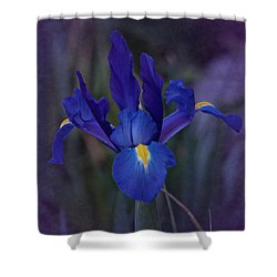 Vintage Blue Magic Iris Shower Curtain by Richard Cummings