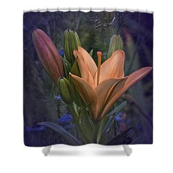 Vintage Lily 2017 No. 2 Shower Curtain