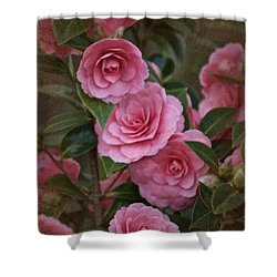 Vintage March 2017 Camillias No. 2 Shower Curtain by Richard Cummings