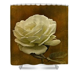 Vintage November White Rose Shower Curtain