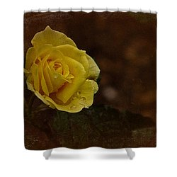 Vintage November Yellow Rose Shower Curtain