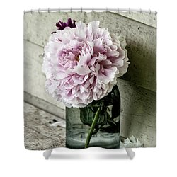 Vintage Pink Peony In Ball Jar Shower Curtain by Julie Palencia