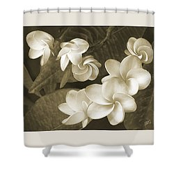 Shower Curtain featuring the photograph Vintage Plumeria by Ben and Raisa Gertsberg