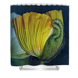 Vintage Poppy 2017 No. 1 Shower Curtain by Richard Cummings