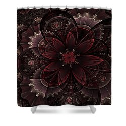 Vintage Queen Shower Curtain