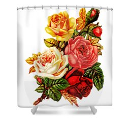 Shower Curtain featuring the digital art Vintage Rose I by Kim Kent