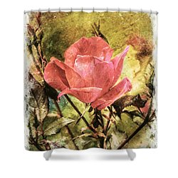 Vintage Rose Shower Curtain