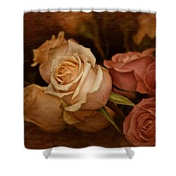 Vintage Roses March 2017 Shower Curtain by Richard Cummings