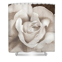 Shower Curtain featuring the photograph Vintage Sepia Rose Flower by Jennie Marie Schell