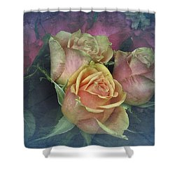 Vintage Sunday Roses Shower Curtain by Richard Cummings