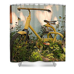 Vintage Tricycle Shower Curtain