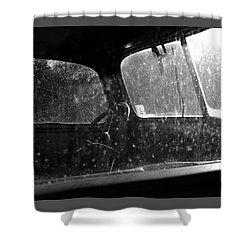 Vintage View Shower Curtain
